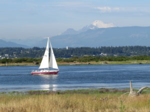 IMG_7870 sailboat and mt baker